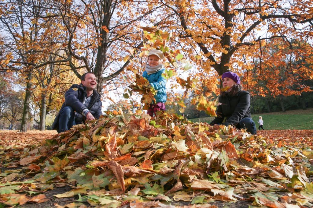 Herbst im Volkspark Friedrichshain