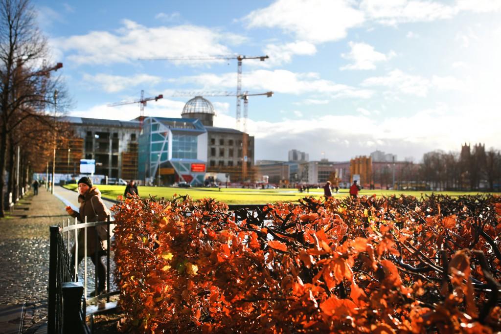 Auch die letzten braunen Blätter werden bald vom Winde verweht sein. FOTO: FRANK SENFTLEBEN